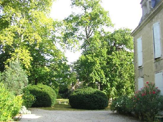 Chateau de Saint Michel de Lanes: Cour