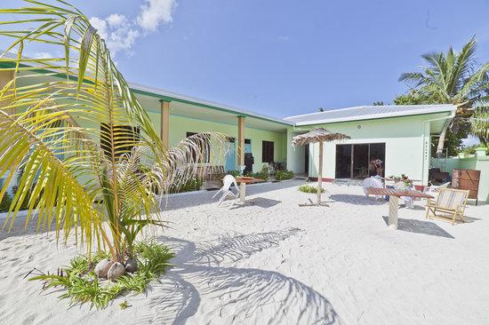Palm Villa Yard