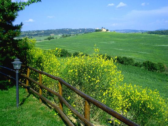 Agriturismo Bonello: the surroundings