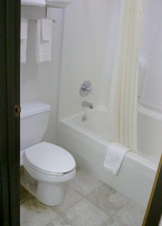 Quality Inn & Suites Sun Prairie: Bathroom