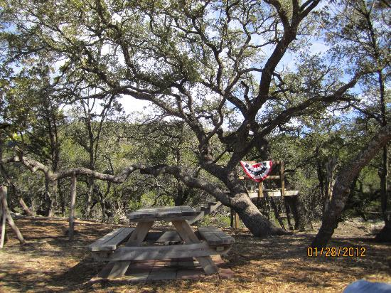 Wimberley Zipline Adventures: training area, you get to zip close to ground to learn