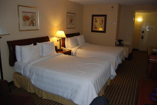 Crowne Plaza Hotel Reading: Another view of the pet room