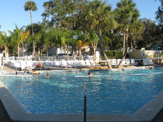 Tropical Palms Resort and Campground: The Pool