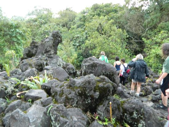 Gray Line Costa Rica: Rocks from the 1991 eruption