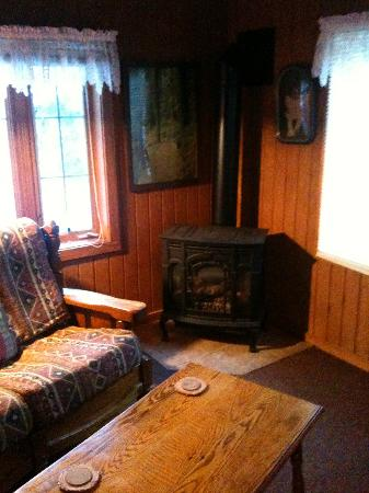 The Nest at Palisades Cabins: Cuddle next to the fireplace