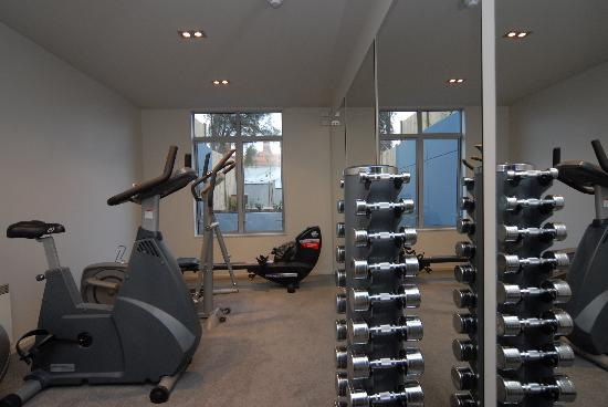 Bluestone on George: Small Gym