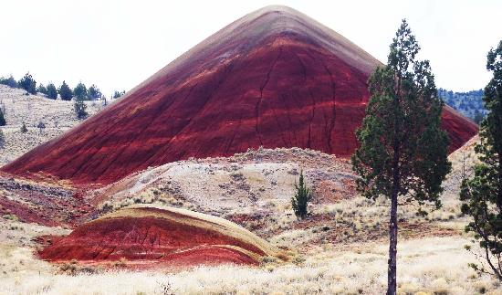 John Day Fossil Beds National Monument: Red Hill at the end of the park