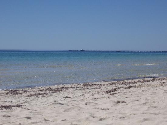 Busselton Villas & Caravan Park: Busselton Villas Beach direct access only 100 metres from back gate