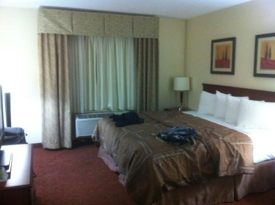 Quality Inn Montgomery : king bed