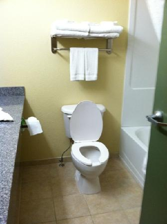 Country Inn & Suites By Carlson, Tallahassee Northwest I-10, FL : Simple bathroom