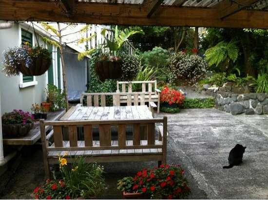Brown Kiwi Backpacker Hostel: The secret garden/patio at the backyard