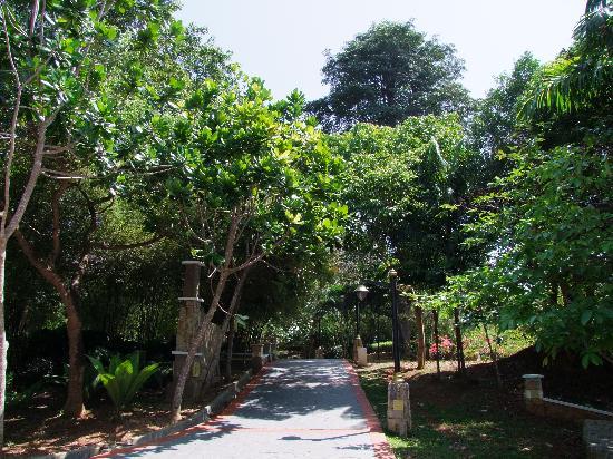 Thousand Flower Garden (Taman Seribu Bunga): A shady path
