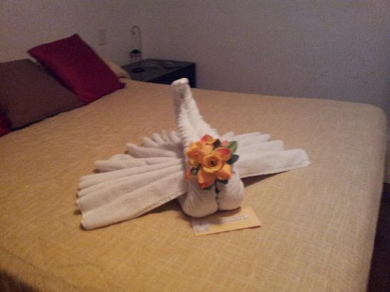 Hotel Cohiba: ROOM