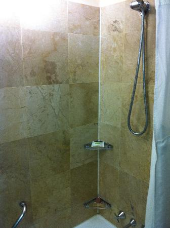 Holiday Inn Potts Point - Sydney: Shower