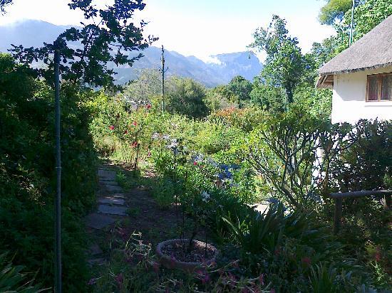 Constantia Woods: Teil des Garten Geländes