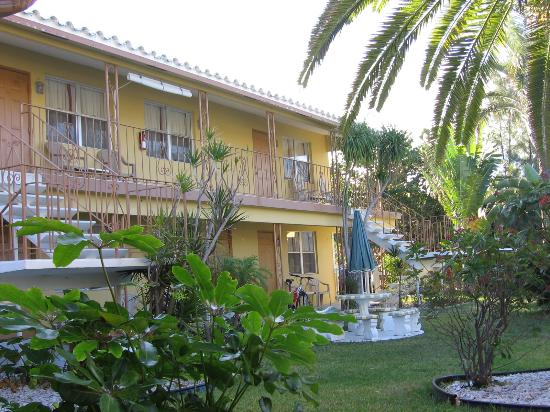 Tropic Isle Beach Resort: Aparrtments surround the garden