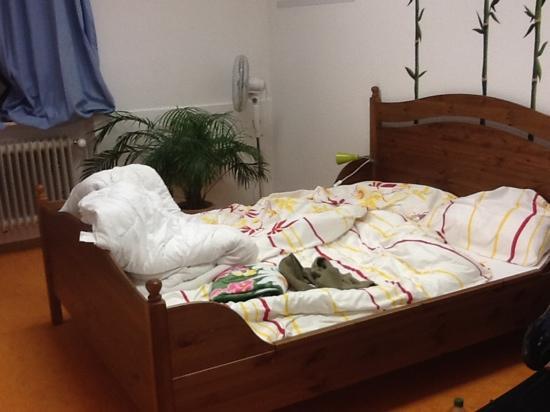 Steffi's Hostel Heidelberg: double bedroom1