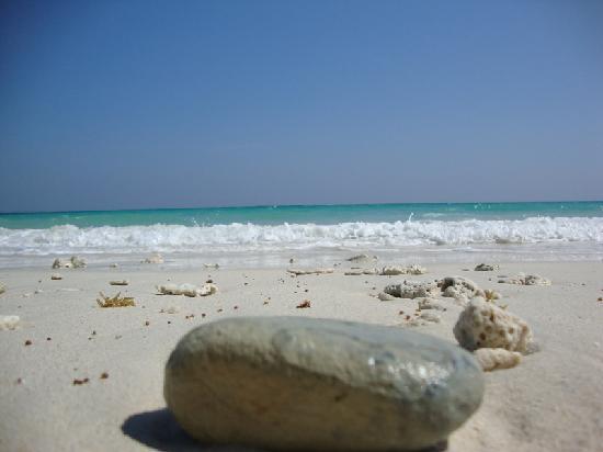 Kaala Pathar Beach : Kalapathar Beach