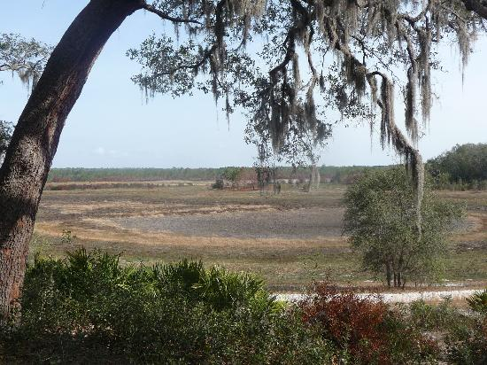 Gold Head Branch State Park: Dried lake bed