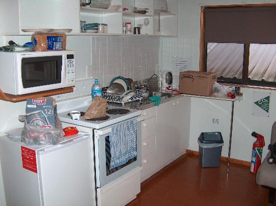 Miranda Shorebird Centre: Whimbrel - kitchen area