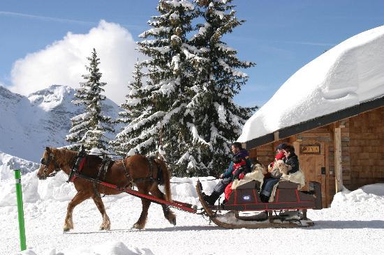 Avoriaz Ski Resort: Traineaux à Avoriaz