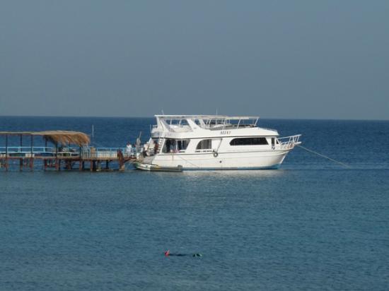Mangrove Bay Boot Am Pier