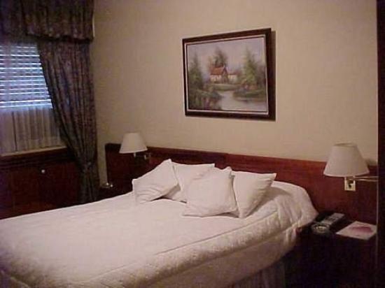 Hotel Dr. César C. Carman: Guest Room