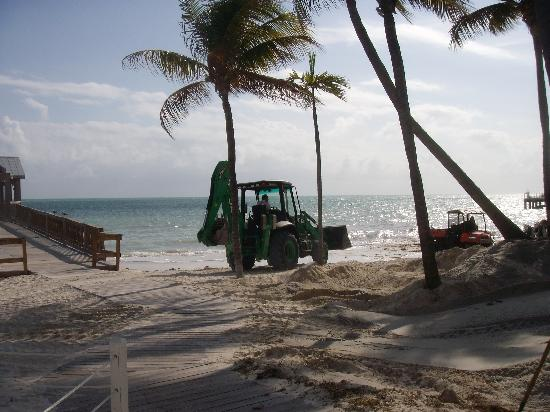 The Reach Key West, A Waldorf Astoria Resort: more beach front pictures