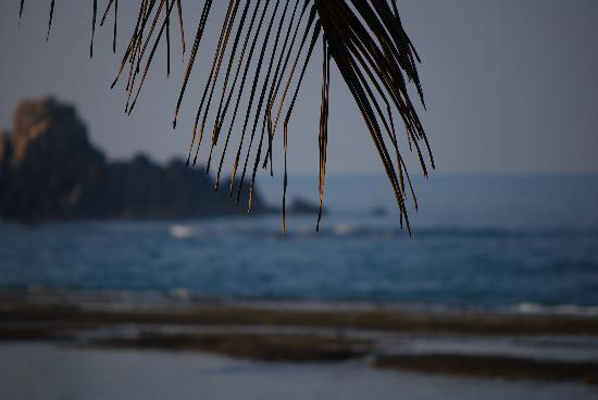 Barberyn Reef Ayurveda Resort: View of the sea from our Beach Front terrace