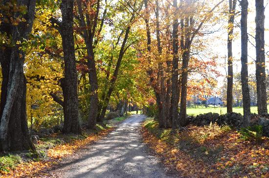 Inn at Valley Farms: Foliage season at the farm