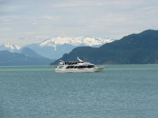 Shoreline Tours and Charters: The Laroan daily tour at Harrison Lake, BC