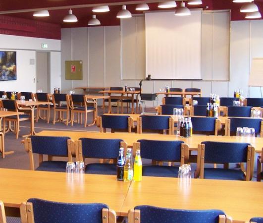 Horning, الدنمارك: Meeting Room