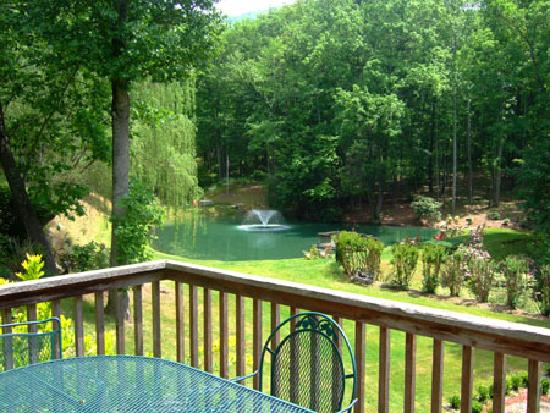Asheville Cabins of Willow Winds: View of Pond from Mom's Manor