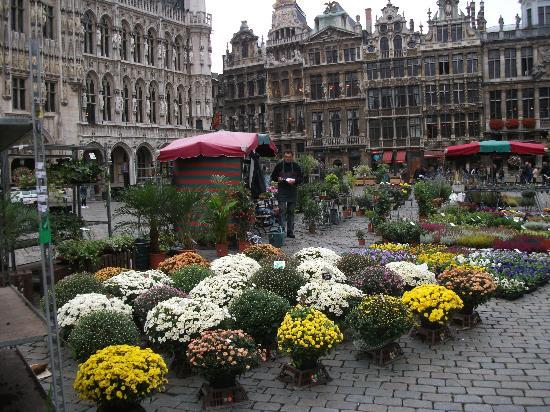 Bruxelles gratuitement