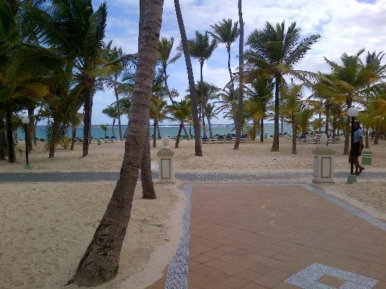 ClubHotel Riu Bambu: view