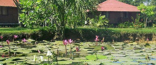 Manish Hotel Ecologico: Manish Hotel & Resort Pucallpa