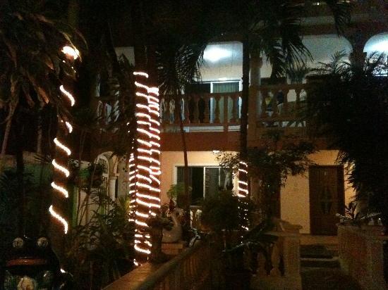 فرانسيس أرلين: hotel