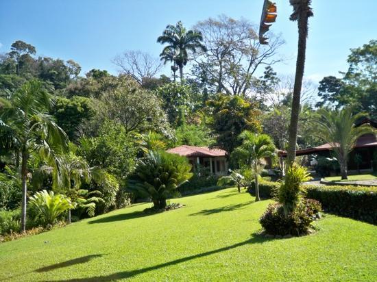 Argovia Finca Resort, Ruta del cafe: gardens