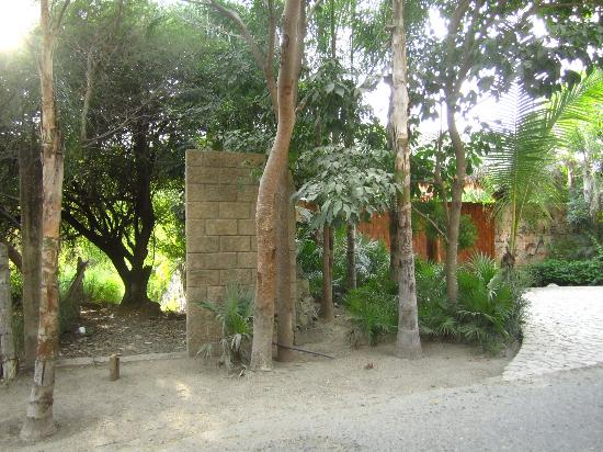 Playa Contramar: The gate to the path