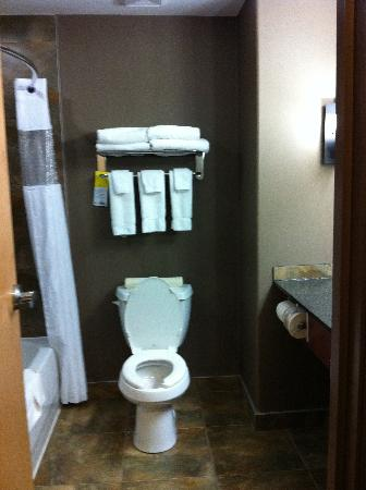 Days Inn and Suites Strathmore: bathroom