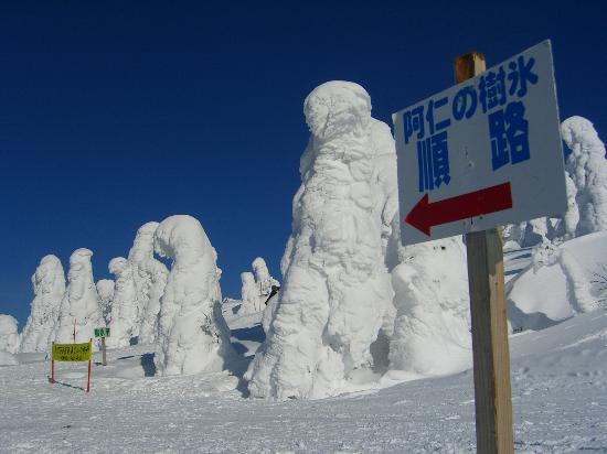 Ani Ski Place: 阿仁スキー場 樹氷2