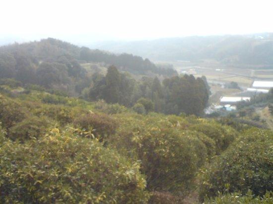 Tabaruzaka Park