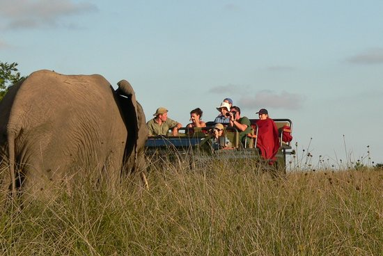 Photo of Lalibela Game Reserve Eastern Cape