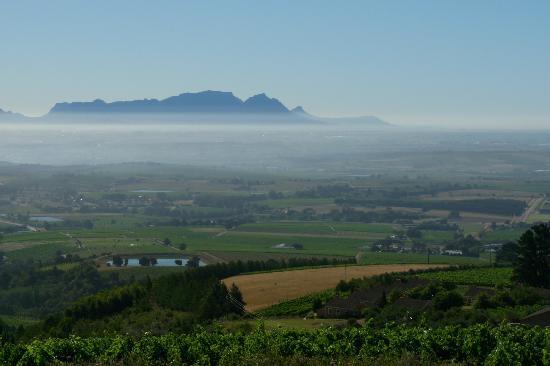 Uva Mira Mountain Vineyards: The stunning view