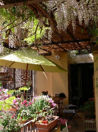 Inn The Garden: Giardino