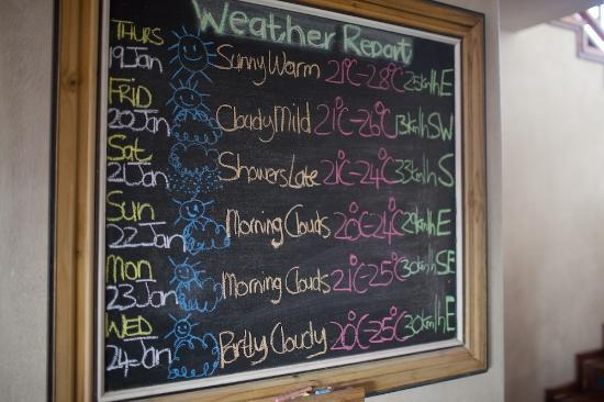 Supertubes Guesthouse: Loved the daily weather report! So cute!