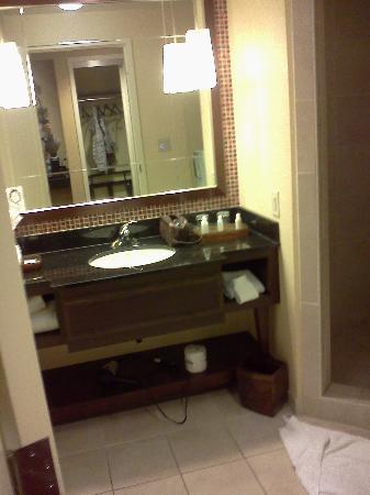 Renaissance Montgomery Hotel and Spa at the Convention Center: Hotel bathroom