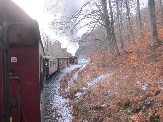 Gasthof Stadel: Narrow gauge steam railway