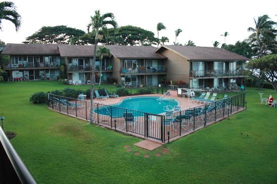Polynesian Shores Condominium Resort: Common grounds and pool
