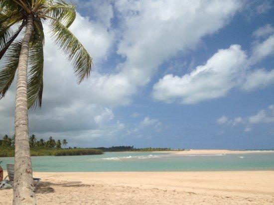 Масейо: vista do encontro do rio (mangue) com o mar!